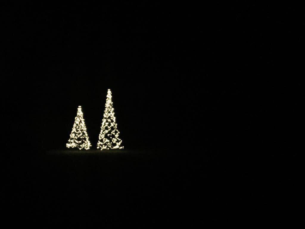 Fairybell LED Weihnachtsbäume Outdoor
